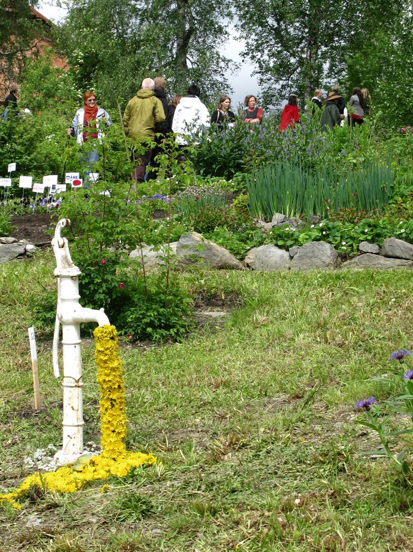 Bastionen 1, Konst i trädgård  Järpen 2008